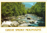 Little Pigeon River Great Smoky Mountains National Park TN cs6813
