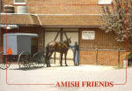 Amish Buggy Postcard cs7017