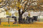 Amish Men With Buggies and Bicycles Postcard cs7027