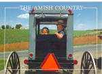 Amish Children in Buggy Postcard cs7028