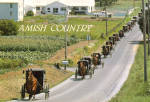 Amish Buggys on Road in Funeral Procession cs7037