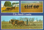 Amish Farmers using 4-7 horse hitches cs7138