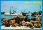 Sponges on The Docks, Tarpon Springs, Florida