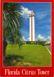 Click here to enlarge image and see more about item cs7699: Florida Citrus Tower Claremont Florida Postcard cs7699