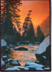 Click here to enlarge image and see more about item cs7731: Sunset on a Forest Stream