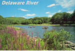 Click here to enlarge image and see more about item cs7823: Delaware River,Delaware Water Gap National Recreation Area