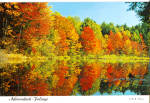 New York State Forest Preseve in Autumn Color, Adirondacks, New York
