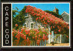 Rose Covered Cottage Cape Cod, Massachusetts