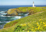 Yaquina Head Lighthouse,North of Newport,Orgon