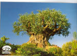 Click here to enlarge image and see more about item cs8012: Tree of Life  Disney s Animal Kingdom cs8012