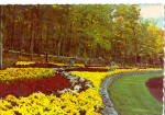 Click here to enlarge image and see more about item cs8033: Sterling Forest Gardens, Tuxedo, New York, Terrace Gardens