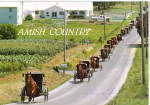 Amish Buggies in Line on Highway cs8039