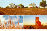 Click here to enlarge image and see more about item cs8144: Farming in Saskatchewan, Canada