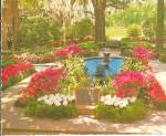 Click here to enlarge image and see more about item cs8185: Bellingrath Gardens Mobile Alabama Postcard cs8185