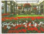 Click here to enlarge image and see more about item cs8193: Main Conservatory, Longwood Gardens, Kennett Square, Pennsylvania
