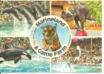 Click here to enlarge image and see more about item cs8559: Marineland and Game Farm Canada Postcard cs8559