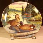 Click here to enlarge image and see more about item d3242: The Blue Winged Teal Collector Plate by Wayne Anderson