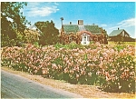 Click here to enlarge image and see more about item lp0044: Rose Cottage on Cape Cod, MA Postcard