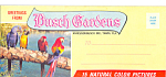 Click here to enlarge image and see more about item lp0289: Greetings from Busch Gardens Florida Souvenier Folder