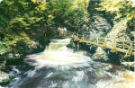 Laurel Glen Bushkill Falls Pennsylvania Postcard lp0514