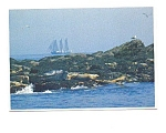Click here to enlarge image and see more about item may3317: Harbor Seals at Boothbay Harbor ME Postcard may3317