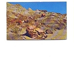 Click here to enlarge image and see more about item may3333: Blue Mesa Petrified Forest  AZ Postcard