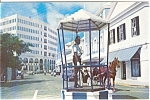 Click here to enlarge image and see more about item n0073: Bird Cage Bermuda Postcard