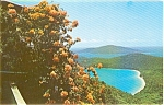 Click here to enlarge image and see more about item n0156: Magens Bay St Thomas Postcard n0156