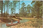 Disney World Ft Wilderness Postcard n0179
