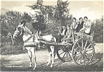 Horse Drawn Carriage from Sicily n0350