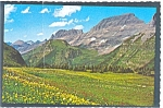 Click here to enlarge image and see more about item n0397: Glacier National Park, MT, Logan Pass