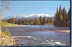 Click here to enlarge image and see more about item n0612: Montana, The Flathead River, North Fork Postcard