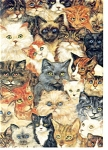 Click here to enlarge image and see more about item n0635: Cats World Postcard n0635