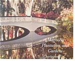 Charleston, SC Magnolia Plantation Postcard