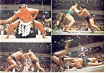 Click here to enlarge image and see more about item n0808: Sumo Wrestlers Postcard