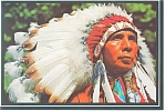 Click here to enlarge image and see more about item n0824: Indian Chief with Feather Bonnet Postcard n0824