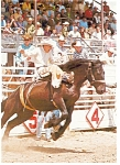 Click here to enlarge image and see more about item n0911: Cody, WY, Rodeo Capital of the World Postcard
