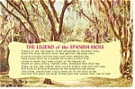 Click here to enlarge image and see more about item n0924: The Legend of the Spanish Moss Postcard