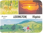 Lexington KY Multi View Postcard n0929