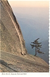 Click here to enlarge image and see more about item n0942: Moro Rock, Sequoia National Park, CA Postcard
