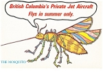 Click here to enlarge image and see more about item n0954: British Columbia Canada Private Jet Aircraft Postcard n0954