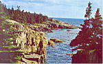 Click here to enlarge image and see more about item n1077: Acadia National Park, Maine Postcard