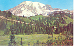 Mt Rainier, Washington Postcard