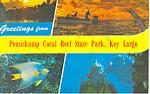 Pennekamp Coral Reef Park,Key Largo,FL Postcard