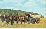 Conestoga Wagon, Landis Valley, PA  Postcard