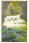 Havana Glen,Montour Falls New York  Postcard
