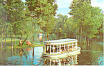 Glass Bottom Boat Silver Springs Florida Postcard n1164