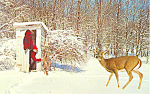 Comical Deer and Outhouse Postcard