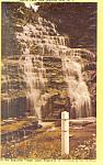 Hector Falls,Near Watkins Glen,NY Postcard