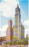 Woolworth Building New York City Postcard p0044